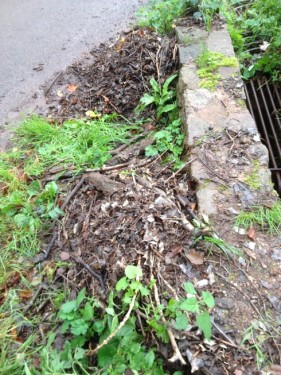 Debris removed from drain